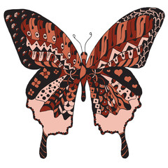 Artistically hand drawn, zentangle stylized butterfly vector, illustration, freehand pencil.