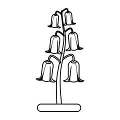 bell shape delicate flower icon image vector illustration design