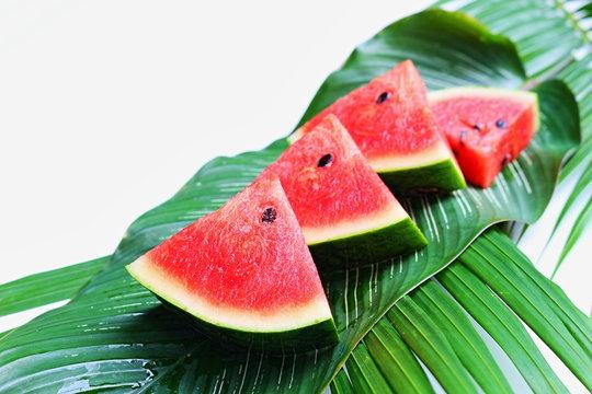 Sliced watermelons on green fresh leaf