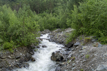 Mountain stream with stony shore between green trees in the foothills of Elbrus, North Caucasus, Russia