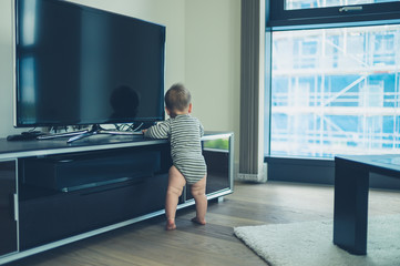Little baby cruising by the television