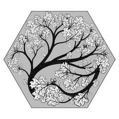 Beautiful oak tree in hexahedron. Vector.