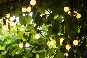 light bulb garland on the wedding