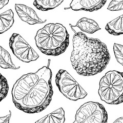 Bergamot vector seamless pattern drawing. Isolated vintage background of citrus fruit with slices.