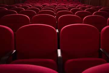 Empty cinema hall. Rows of red chairs. The crisis in film distribution