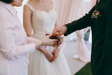 Bride and groom put rings on each other and show them at the ceremony
