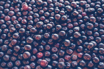 Black Chokeberry Ashberry background, top view