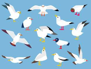 Cartoon atlantic seabird.