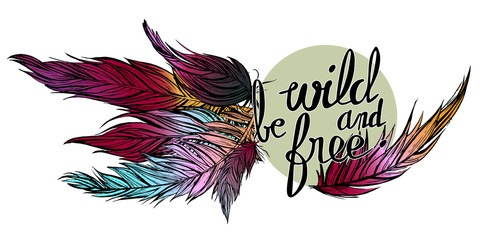 vector illustration of hand drawn colorful feathers with quote be wild and free on a blue grey circle