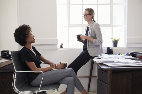 Smiling young businesswomen talking with each other in the office during break
