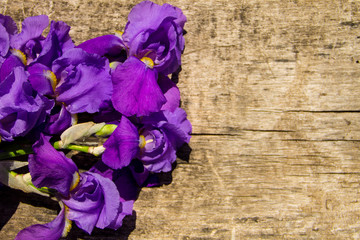 Purple iris flowers on wooden background with copy space