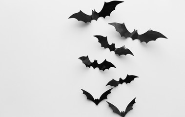 halloween decoration of bats over white background