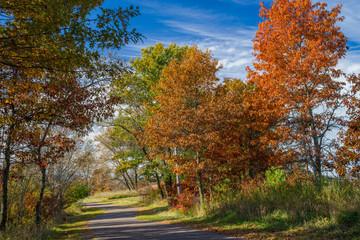 autumn trail, bunker hills regional park, minnesota