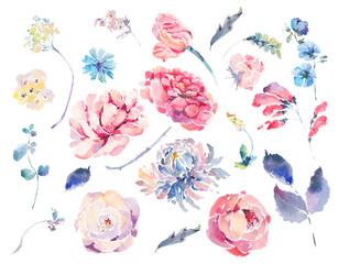 Watercolor set of vintage floral summer roses