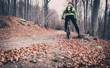 Mountain biking on trail in autumn forest