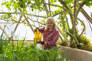 Caucasian woman watering garden in greenhouse