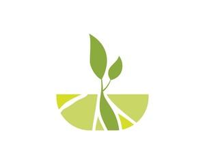 tree land abstract logo
