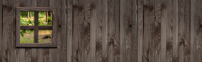 Wooden wall and forest outside the window