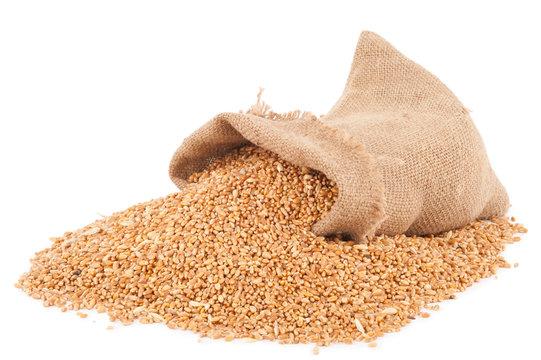 Sack of wheat grains