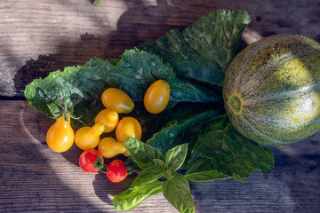 Red cherry, melon and basil grown in the eco garden
