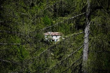 Montagne refuge ballade colibris et papilons course VTT paysages , refuge de montagne