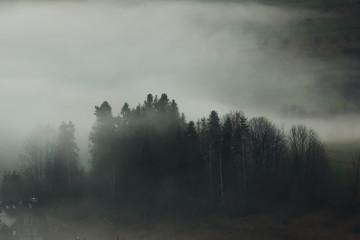 Foggy morning in Tatra mountains, Zakopane, Poland Fototapete