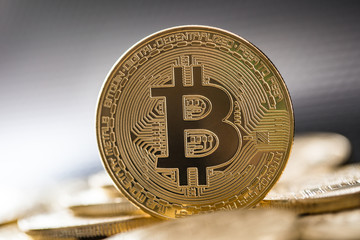 Bitcoin gold coin. Cryptocurrency concept.