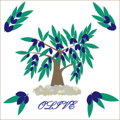 Vector tree olive. Olive branch Clip Art