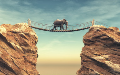 An elephant goes on a wooden bridge