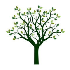 Color Tree with Leaves. Vector Illustration.