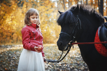 Beautiful little girl in autumn Park on a pony horse.