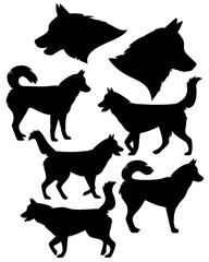 siberian husky silhouette collection - black vector dog set against white