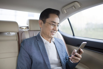 Businessman using smart phone inside car