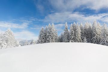 Fototapete - Winterwonderland in den Alpen