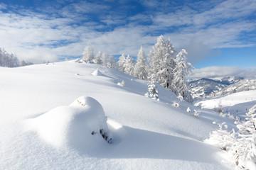 Wall Mural - Verschneite Winterlandschaft, Austrian Alps