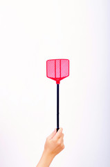 fly swatter in a woman's hand