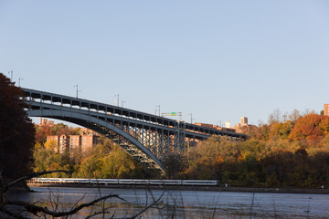 The Bronx in Autumn