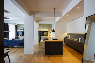 Spacious living room and kitchen in contemporary interior