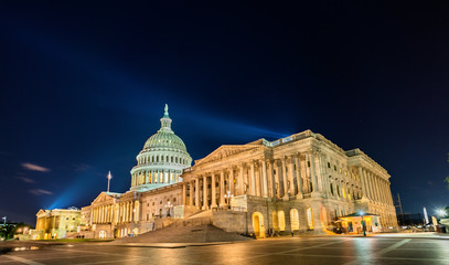 Garden Poster New York City The United States Capitol Building at night in Washington, DC