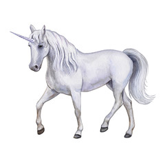 The white horse is a unicorn. Watercolor, illustration, image for print, poster, textile, clothing design