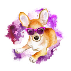 Chihuahua dog in pink glasses. Cute animal watercolor illustration. Hand painted