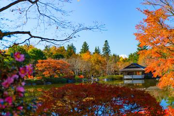 日本の秋、四季のイメージ