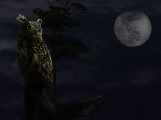 Illustration of the owl with big glowing yellow eyes sitting on a tree branch in the full moon night.