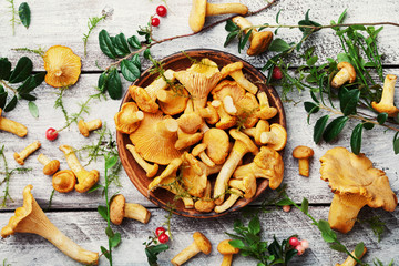 Still life with chanterelle mushrooms and herbs