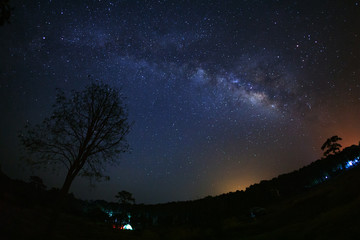 milky way galaxy and silhouette of tree with cloud at Phu Hin Rong Kla National Park,Phitsanulok Thailand