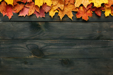 Wooden background with autumn leaves