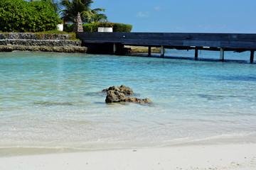 Beautiful tropical Maldivian island