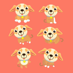 Cute chihuahua set in different poses.