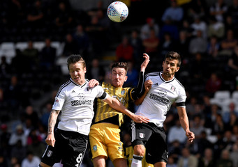 Championship - Fulham vs Sheffield Wednesday