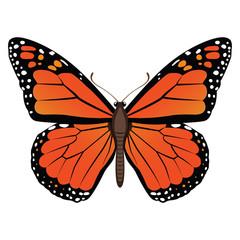 Векторный рисунок оранжевая бабочка